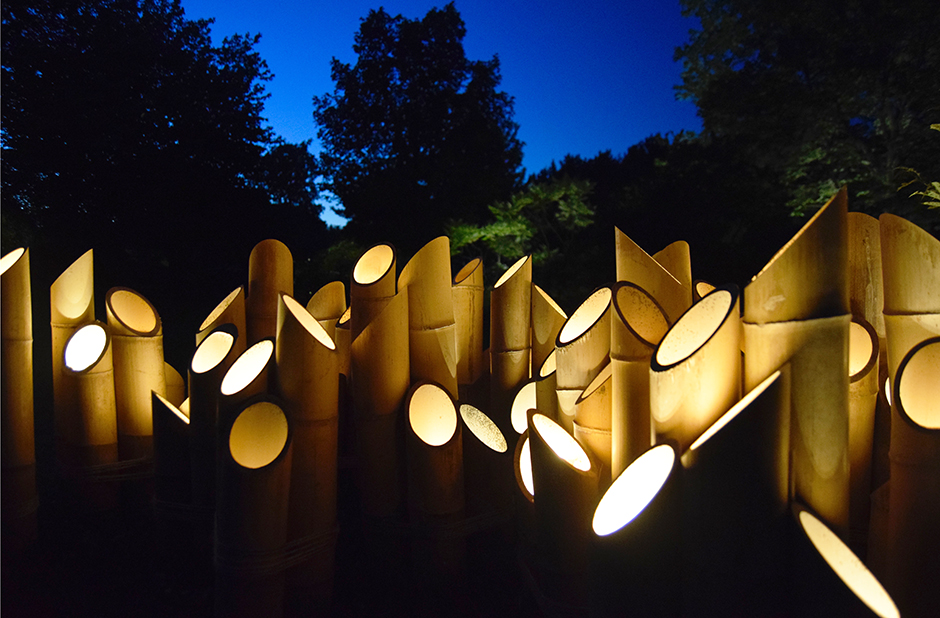 Eclairage jardin japonais