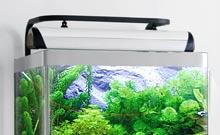 Eclairage aquarium 9w